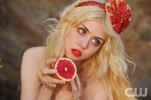 Allison from ANTMAntm, Allisonharvard, Fashion, Allison Harvard, Next Tops Models, Models Pics, Blood Orange, Beautiful People, Happy Holiday