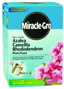 Miracle-Gro 100070 Azalea/Camellia/Rhododendron Plant Food - 1.5 Pound by Miracle-Gro. $8.61. Rich in iron and other essential nutrients; also good for magnolias, gardenias, orchids and all evergreens. Weighs 1.5 pound. Fertilizer analysis: 30-10-10. A special plant food that creates the ideal growing environment for acid-loving plants like azaleas, rhododendrons, camellias, dogwoods. Miracle-Gro azalea/camellia/rhododendron plant food. Miracle-Gro azalea/camelli...