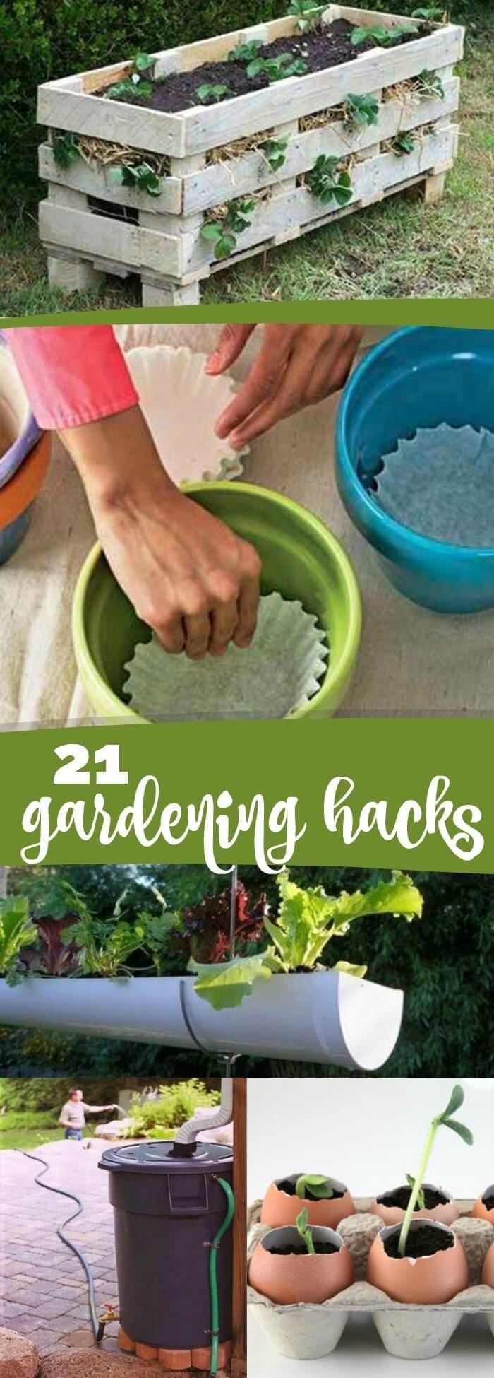 21 Genius Gardening Hacks