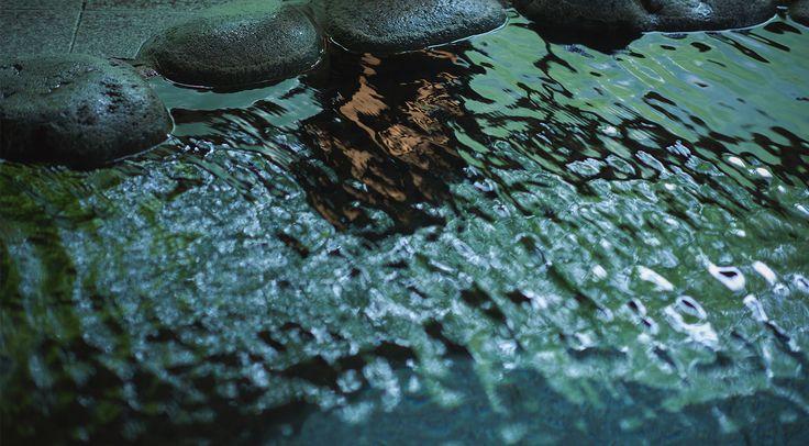 小岩井農場とつなぎ温泉からも近い、源泉100%掛け流しの温泉旅館です。田沢湖・乳頭温泉・秋田角館への観光コースとして至便で、自然の懐に抱かれた濃い温泉と、手づくりの会席料理でおもてなしする宿です。日本旅館の伝統を重んじ、宿の原点「宿心」を大切にしております。