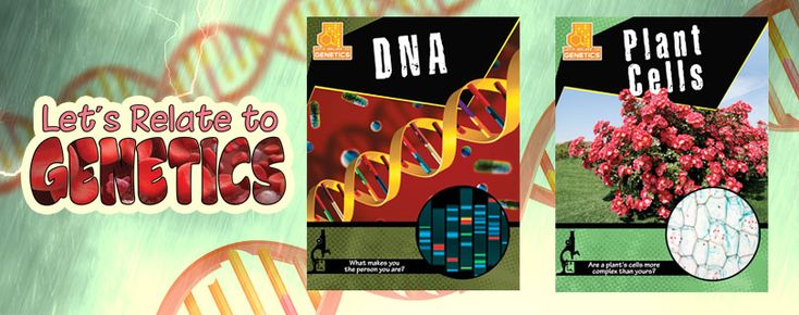 Let's-Relate-to-Genetics series (Crabtree Publishing)_ From dominant and recessive inherited traits to the DNA double-helix, these books give clear explanations of human, animal, and plant genetics. Grades 5-8