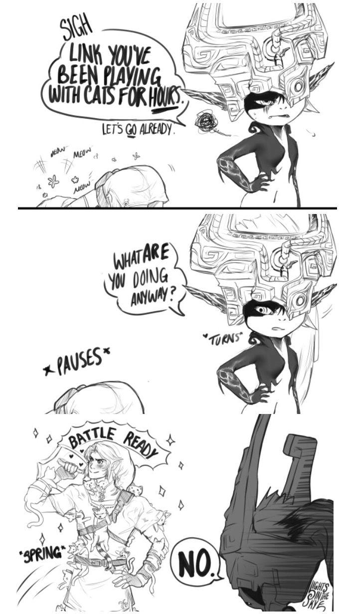 Ahaha! Link's cat armor!