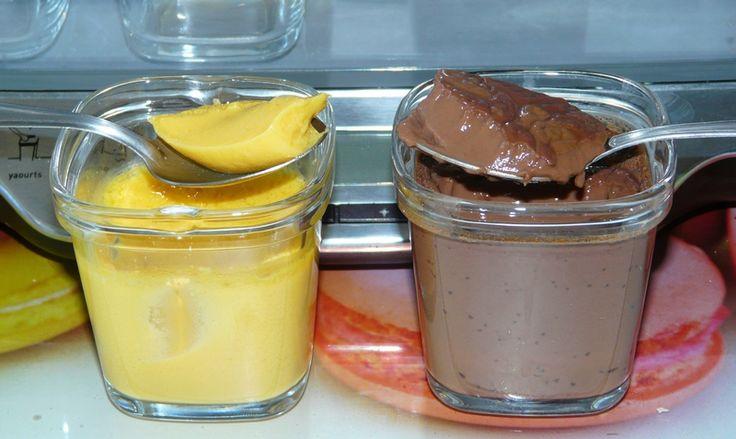 Flans légers vanille ou chocolat - Multi Délices - WW - Le chaudron en ébullition