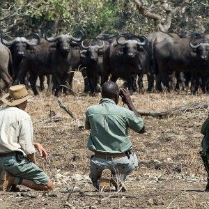 Best walking holidays in South Africa | walking safaris in Africa