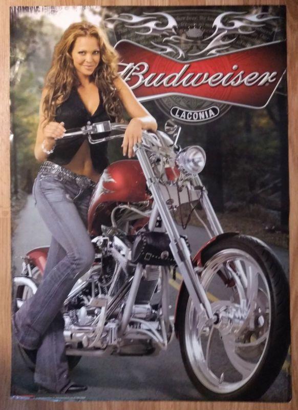 Budweiser Beer Girls Models Budweiser Girl Posters Online Budweiser Girls Girl Posters Beer Girl