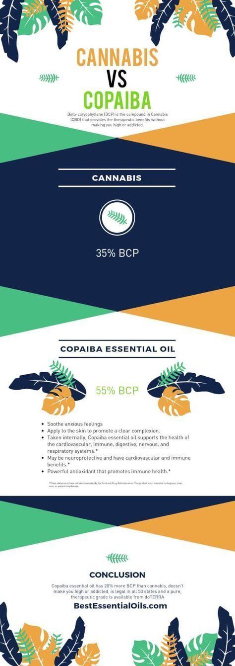 doTERRA Copaiba Essential Oil vs Cannabis or CBD Oil