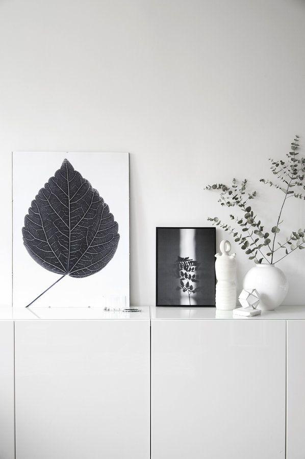 pflegeleichte Pflanzenliebe Die schönsten Poster in echten Wohnungen  #poster #interior #deko #decor #inneneinrichtung #dekorationsideen #black #white #leaf  Foto: na.hili