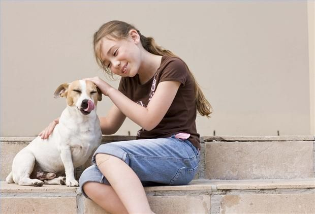 Cómo enseñar a los niños a cuidar a los animales - Una mascota puede ser una experiencia maravillosa para los niños, enseñándoles acerca de la responsabilidad, el amor y cómo cuidar a otro ser vivo.