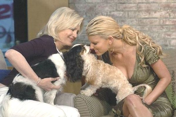 cavalier king charles spaniel with celebrities | Diane Sawyer with Lila (tri-color cavalier)