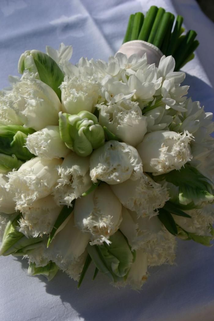 les 25 meilleures idées de la catégorie bouquet de tulipes