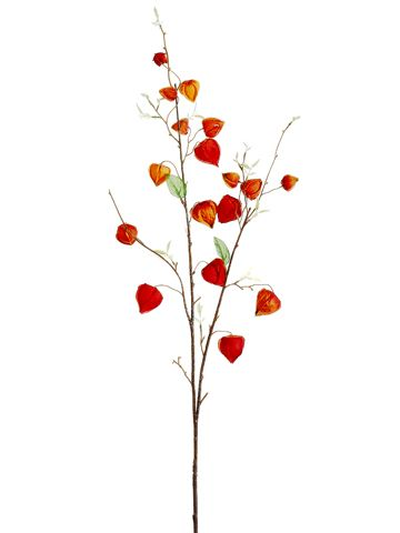 21 best flowers for arrangements images on pinterest floral chinese lantern spray in red orange 37 tall only 399 silk flowers wedding flowers fall mightylinksfo