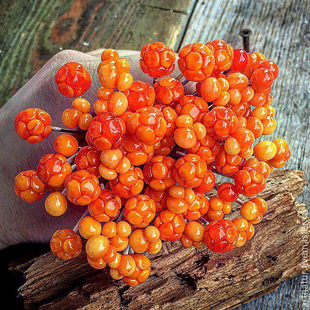 """Купить Браслет lampwork """"Морошка"""" - Rubus chamaemorus - оранжевый, рыжий…"""