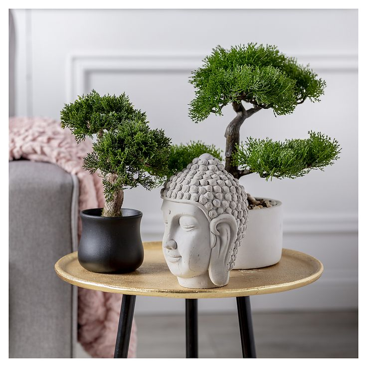 Lo natural siempre aportará estética y armonía al diseño. Arma este rincón especial en Homy. ¡Te esparamos! Bonsai, Planter Pots, Patio, Bedroom, Decoration, Rose, Flowers, Inspiration, Home Decor