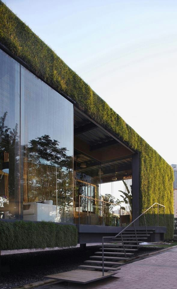 rooftop and exterior walls green design