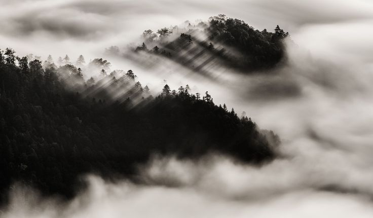 Photo Like a dragon by Mitsuhiko Kamada on 500px