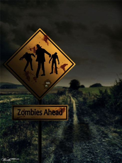 Zombies Ahead...Do you continue or go back?!?! ... I'd be that dumb ass in a horror flick who just has to see for themself; and then is the first one killed!!! LOL