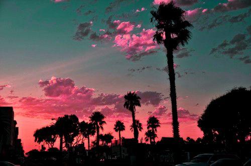 Sunset on a beach: Bucket List, Bucketlist, Sunset, Summer, Pink, Places, Things, Photography