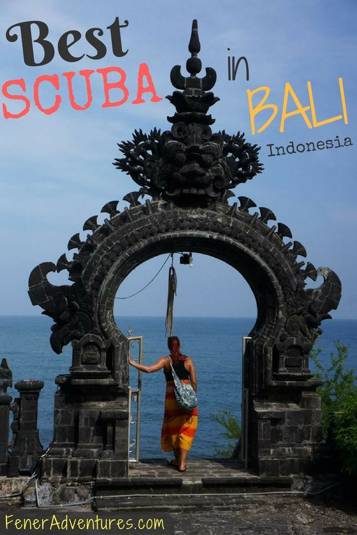 Planning a trip to Bali for SCUBA diving? Check out our favorite dive sites.  www.FenerAdventures.com | adventures in Bali | Indonesia | where to scuba dive | places to scuba dive | what to do in Bali | Things to do in Bali