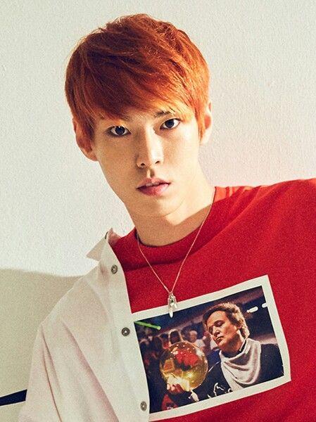 DOYOUNG  Nome: Kim Dongyoung Idade: 21 anos (20 anos em nosso calendário) Data de Nascimento: 1° de fevereiro de 1996. Local de Nascimento: Seul, Coreia do Sul Tipo Sanguíneo: B Altura: 1,79 cm Signo: Aquário Signo Chinês: Porco Especialidade: Flauta  Curiosidades • Doyoung é irmão mais novo do ator e integrante do grupo 5URPRISE, Kim Donghyun, popularmente conhecido como Gong Myung. • Antes de fazer parte da SM, Doyoung foi o vocalista de uma banda da escola chamada Heart Track. • Doyoung…