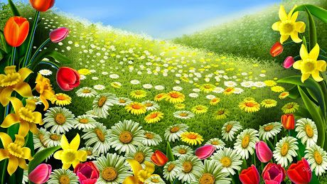 Fantasy Colorful Flowers Garden wallpapers