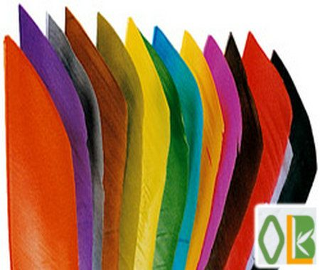 full length feathers from Oulay Do you have interest? contact:ruby@oulay.com http://oulay.en.alibaba.com/