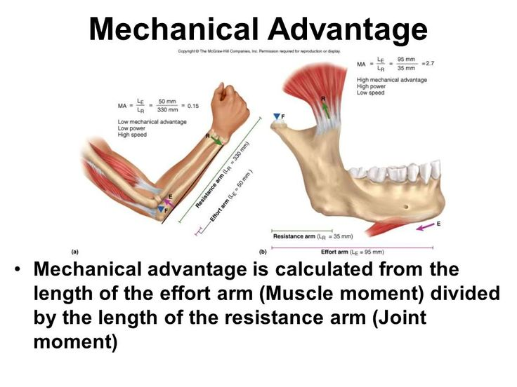 7 best calculating mechanical advantage images on Pinterest - basic promissory note
