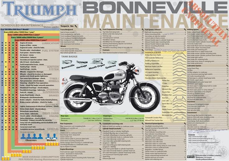 Triumph Bonneville Maintenance in Infographic