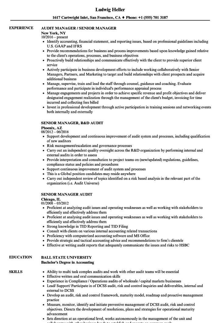 Senior Manager Audit Resume Samples Velvet Jobs with