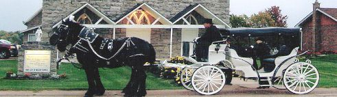 Redmond's Horse Drawn Weddings | Wedding carriage hire | Horse and carriage hire for weddings | Wedding horse and carriage