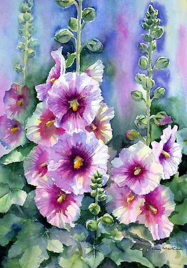 """art by anne mortimer   Hollyhocks"""" by Ann Mortimer   Redbubble"""