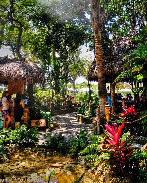 Guanabana's - Jupiter, FL my favorite!!! Dolphin punchers are amazing!