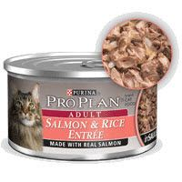 Top WORST Canned Cat Food Brands