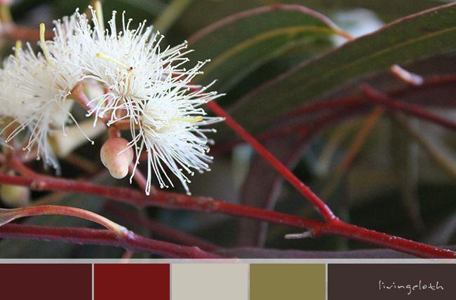 livingcloth.com | Creating Love Of The Handmade | - eucalyptus blossom
