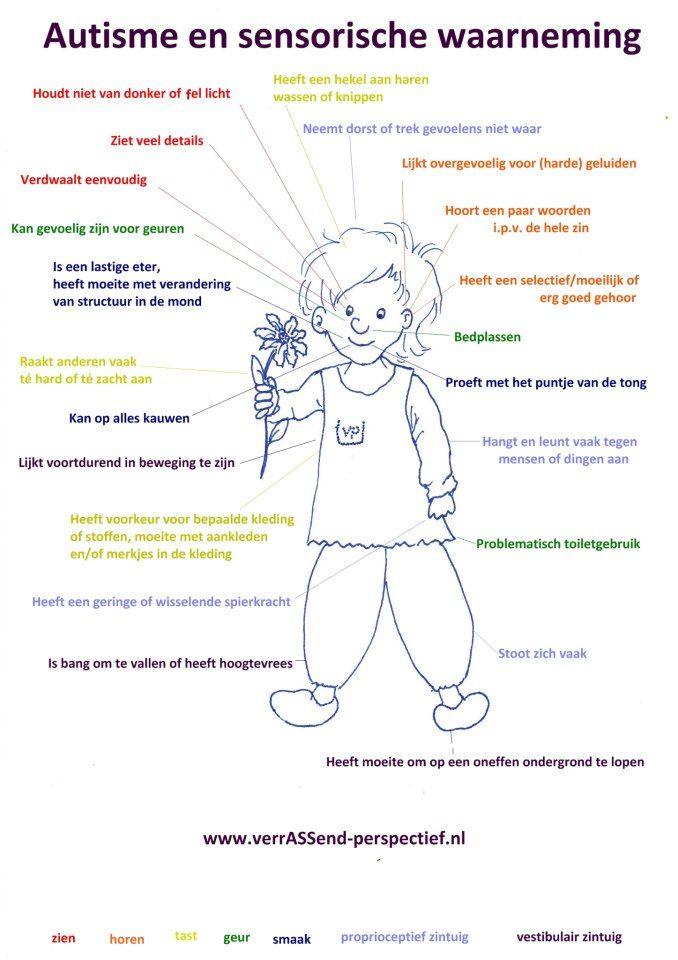 Autisme en sensorische waarneming