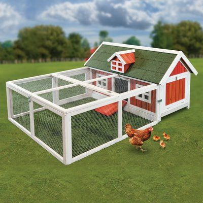 This Advantek The Tower Chicken Coop is the perfect home for two chickens. It provides a safe place for your chickens to roost. The Tower Chicken Coop by Advantek has a wooden frame, which ensures strength and durability. It is constructed of lightweight, insect, and rot-resistant fir lumber. It has an auburn finish, which looks visually appealing. It includes a removable roof and hinged door on nesting box for easy access. The ramp closes for complete containment and window slides over to…