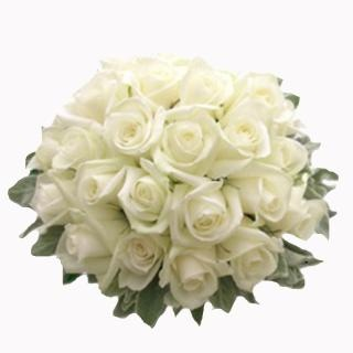 Bunch of White Roses as epitomyof ' Promise of Love '