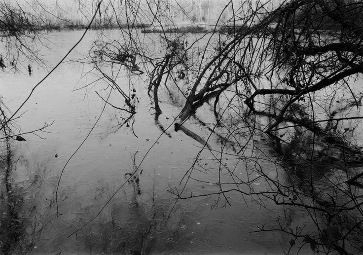 02. Sandy Creek (1998)