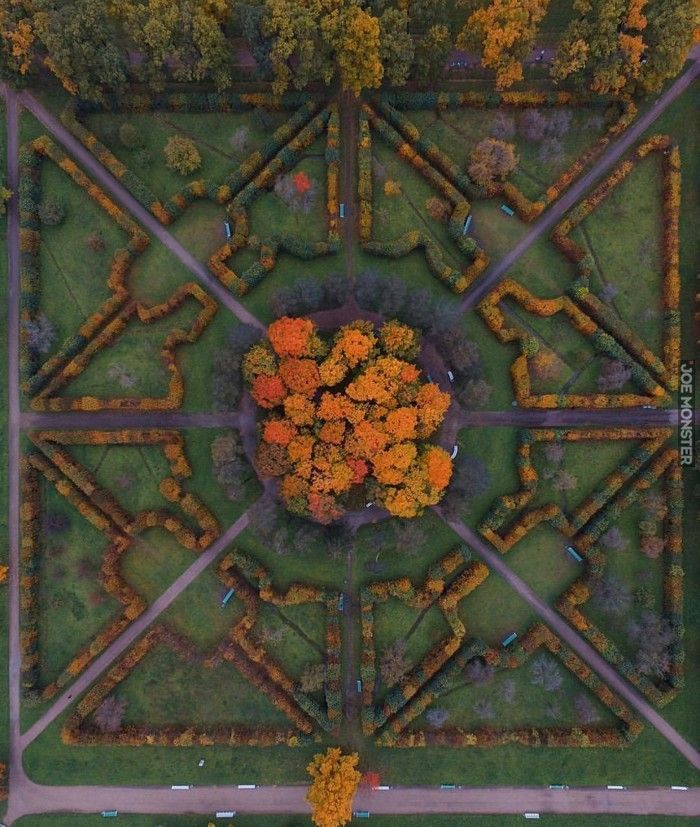 Jesienna symetria w Petersburgu - Joe Monster