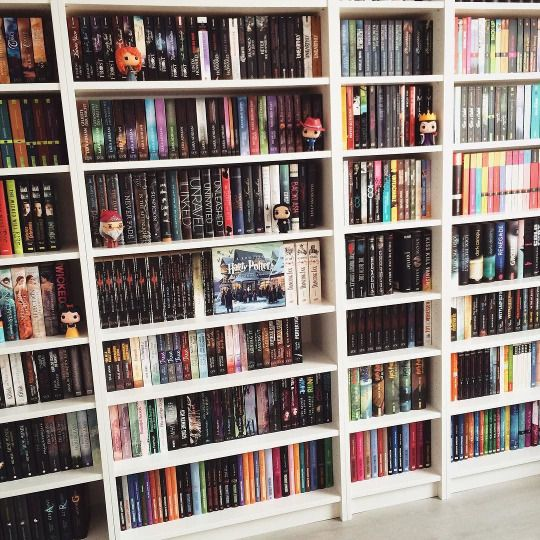 I need this in my room!!!! My bookshelf is a mess currently