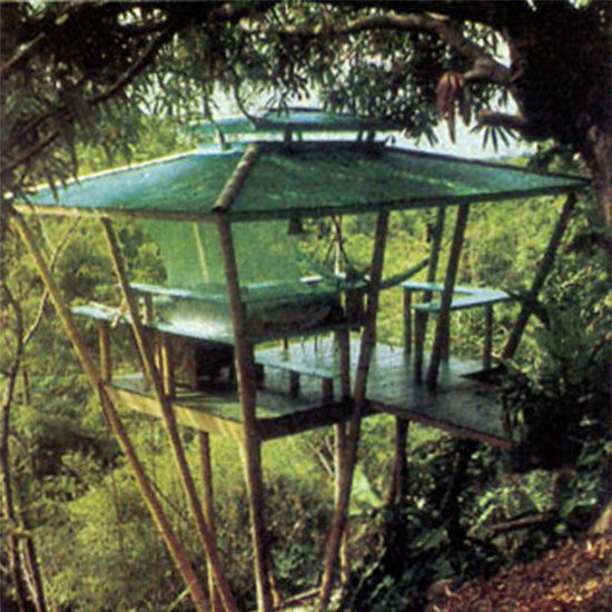 Before you get your plans underway, consult this expert advice on how to build a treehouse.