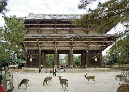 Temple Todaiji (Nara): Hogar d'una estatua de Buda de 15 m d'altura. Podem trobar cèrvols que circulen lliures pels voltants.