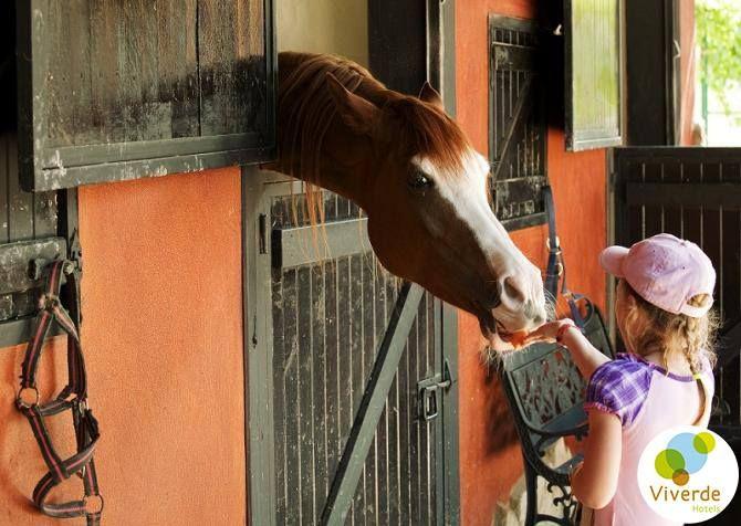Çocuklarınıza doğa ve hayvan sevgisini aşılamak için hepinizi tesisimize bekliyoruz #Hotel #Berke #Ranch #Kemer