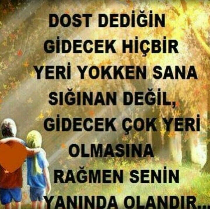 Dost  ...
