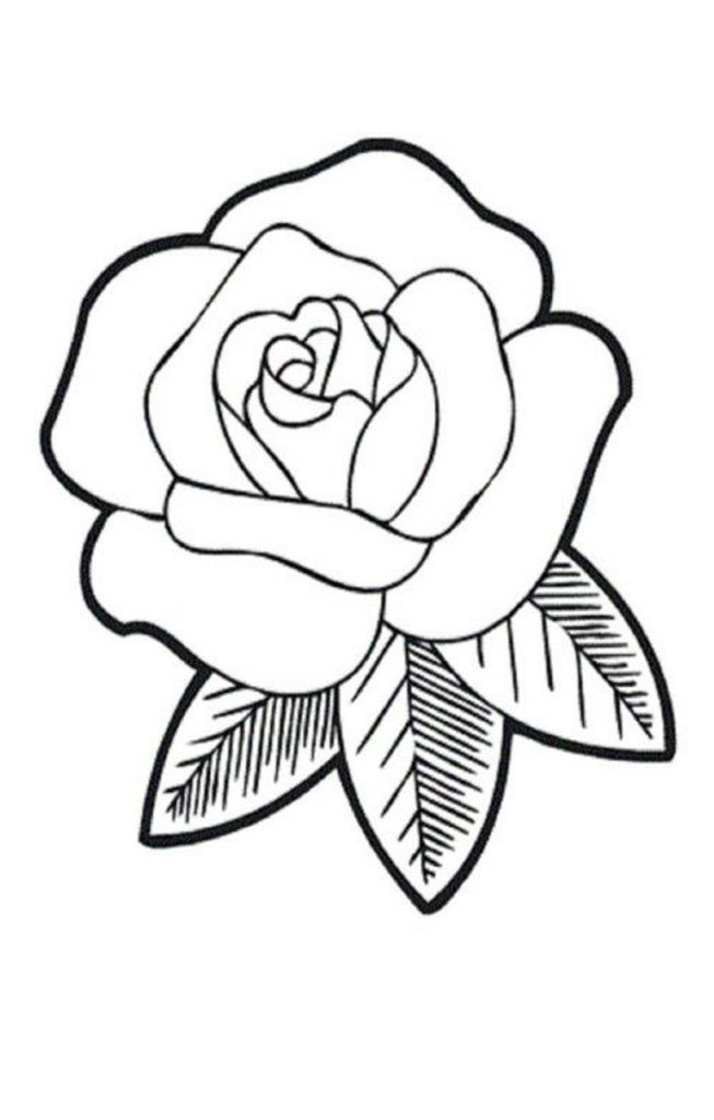 Free Coloring Pictures Of Roses