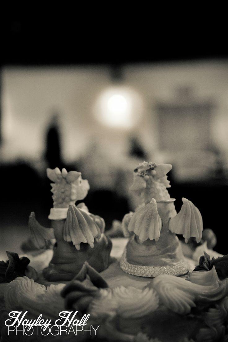 Tyler Texas Wedding Photography Cakes Dragons