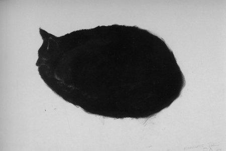 Black Cat,  Peter Alexander   Visit englishmuse.com