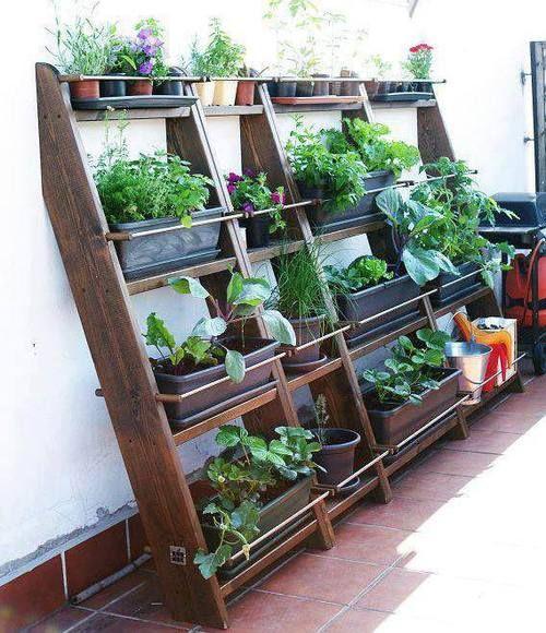 Small Garden with Space saver # space #garden #saver