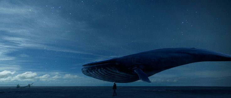 """Most amazing short movie from Sil van der Woerd, """" When the last remaining blue whale comes eye to eye with its only enemy: mankind"""" http://silvanderwoerd.com/?v=44"""