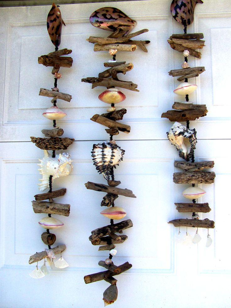 Drift wood and shells