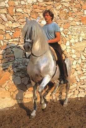 Klaus Ferdinand Hempfling reveals why he likes to ride without reins, even though sometimes reins are better. Read more: http://www.horsetalk.co.nz/2016/07/28/riding-without-reins-better-some-horses/#ixzz4FhPhqviE  Reuse: Interested in sharing with your readers? You are welcome to use three or four paragraphs, with a link back to the article on Horsetalk.  Follow us: @HorsetalkNZ on Twitter | Horsetalk on Facebook